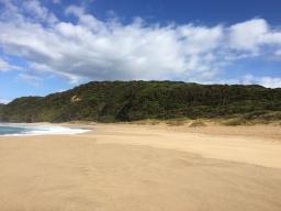 johanna beach 4